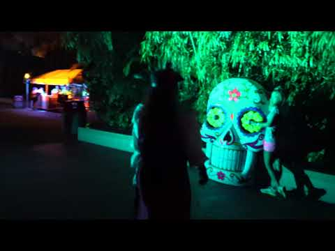"[4K] ""Dia De Los Muertos"" Scare Zone Howl O Scream Tampa Bay Nighttime Walkthrough"