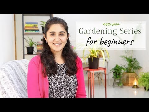 Grow with Me: Gardening Series for Beginners