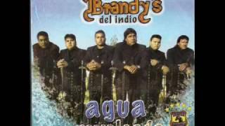 Los Brandys del Indio   Vivoras