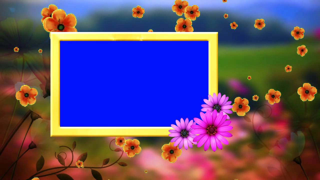 hd wedding frame blue background fallen flowers animated video youtube