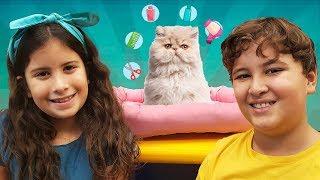 MARIA CLARA E JP GANHAM UM GATINHO 🐱 Maria Clara and JP won a kitten