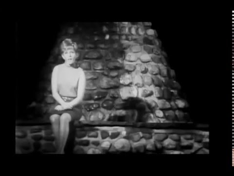 Lesley Gore  - You Don't Own Me (1964)(stereo)