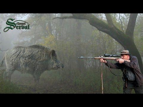 Wild Boar Hunting in Baranya –Part 2.- Perfect shots; Wildschweinejagd -Pirsch in Baranja - 2
