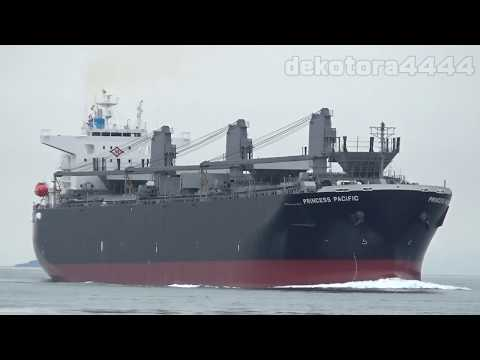 Wood Chips Carrier「PRINCESS PACIFIC」