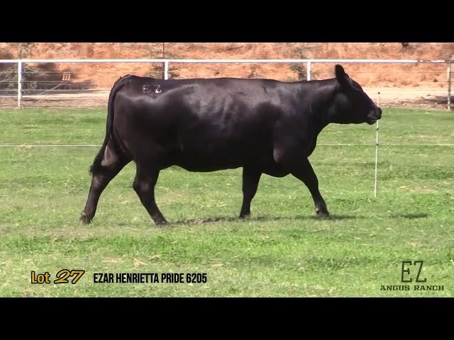 EZ Angus Ranch Lot 27