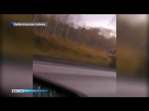 Водитель грузовика погиб в аварии на трассе Тюмень - Омск