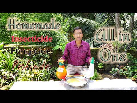 How to make Insecticide, Pesticide , Fungicide , Antibiotics Miracle All in one Solution.
