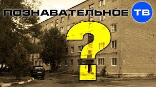 Почему советские строители не закопали хрущёвки? (Познавательное ТВ, Артём Войтенков)