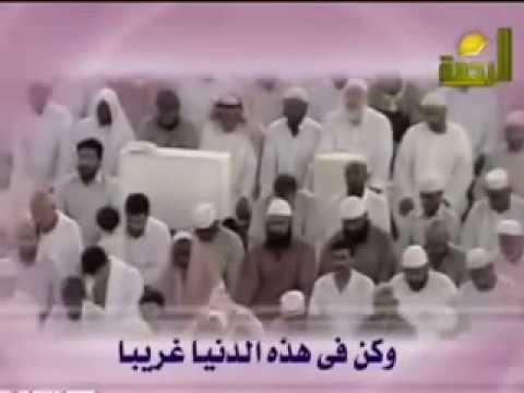 Ana Al Abdou Mohamed Hassen