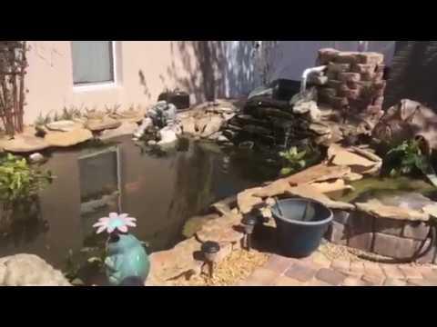 How to build a koi pond do it yourself pond ideas youtube how to build a koi pond do it yourself pond ideas solutioingenieria Choice Image