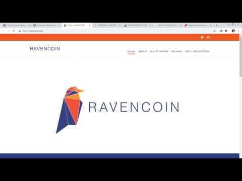 Криптовалюта Ravencoin (RVN) - краткий обзор, гипотеза о ее пампе
