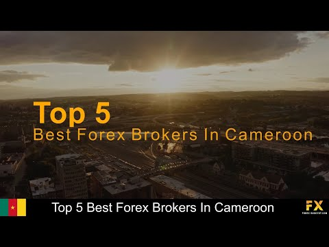 Best Forex brokers In Cameroon📈