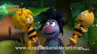 Türkçe Yeni Bölüm Arı Maya İzle - 6. Bölüm TRT Çocuk 2017