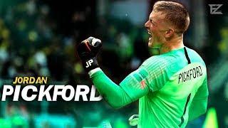 Jordan Pickford 2018 ▬ The Guardian • Amazing Best Saves || HD