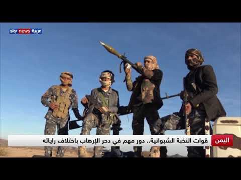 قوات النخبة الشبوانية.. دور مهم في دحر الإرهاب باختلاف راياته  - نشر قبل 3 ساعة