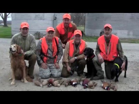 Kentucky Pheasant Hunt