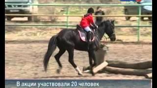 Вести-Хабаровск. Конный спорт. Акция для новичков