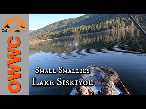How To Catch Small Smallmouth At Lake Siskiyou