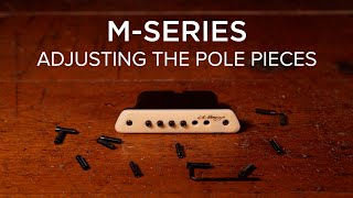 M Series | Adjusting The Pole Pieces