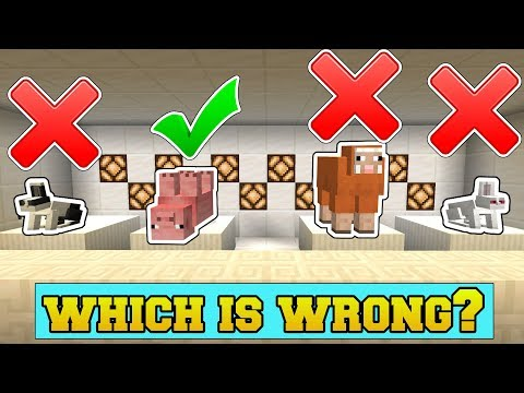 Minecraft: WHICH MOB DOES NOT BELONG?!? – ODD MOB OUT – Mini-Game