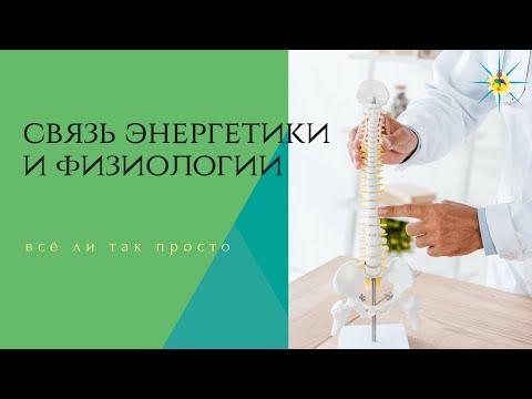 Зависимость здоровья органов от работы чакр. Антон Артмид