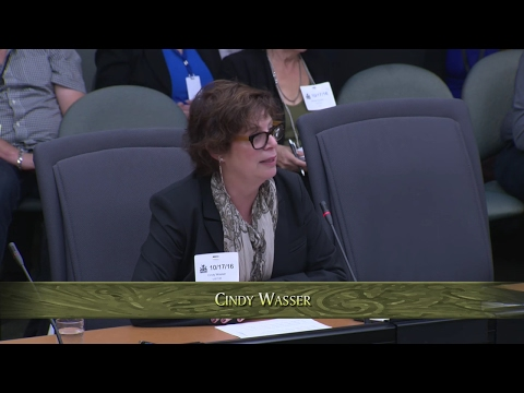 Cindy Presents to Provincial Standing Committee on Social Policy