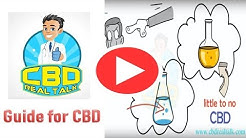 CBD Oil | Guide In Choosing the Right CBD Oil | CBD Real Talk