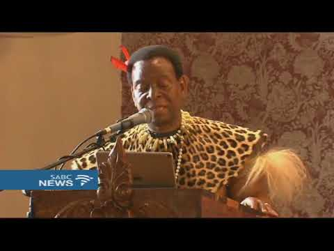 DA leaders visit King Goodwill Zwelithini