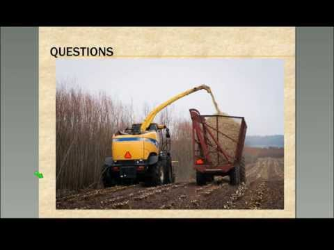 Northeast Bioenergy Webinar—Willow Biomass Harvest & Quality