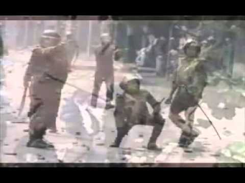 Egyptian Army Kills his own people