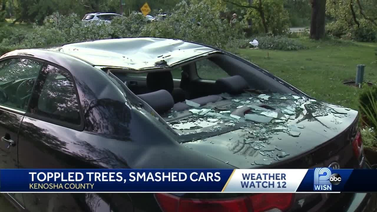 Toppled trees, smashed cars