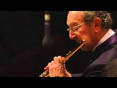 G. P. Telemann: 7ème Fantaisie En Ré Majeur - Maxence Larrieu flute