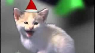 gatitos cantando canciones de navidad