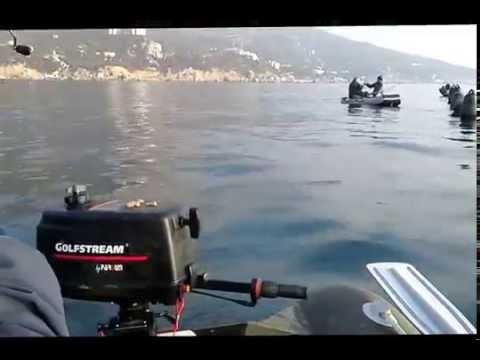 Рыбалка в Крыму на море с берега, рыбалка в крыму на озерах