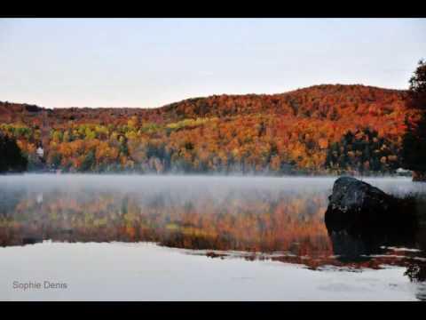 Art Picture Nature (Canada  Ottawa)