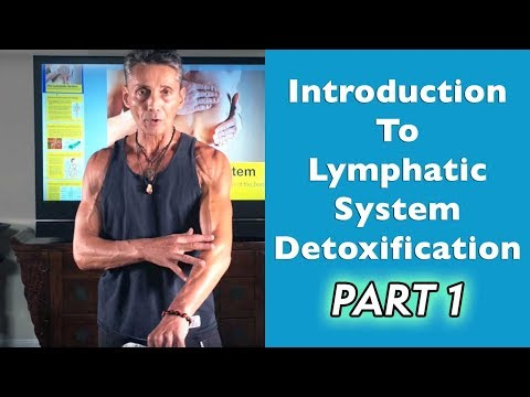 Introduction To Lymphatic System Detoxification Part 1   Dr. Robert Cassar
