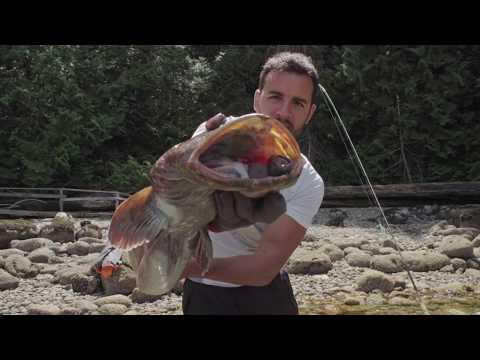 Sechelt BC Kayak Fishing Trip