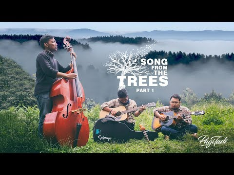 Pagi Tadi - Song From The Trees Part 1