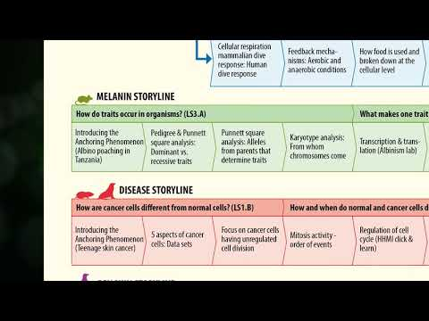NGSS Storylines