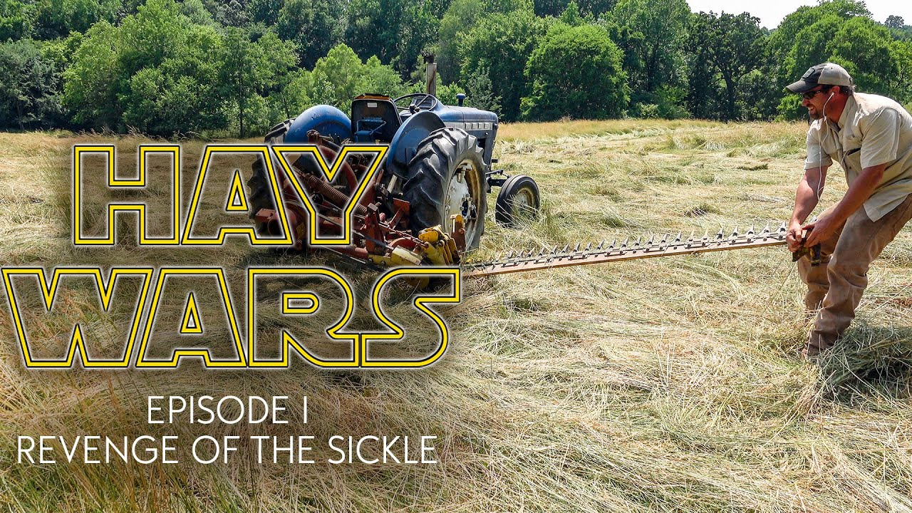 HAY WARS - REVENGE OF THE SICKLE   Cutting Hay with a New Holland 451  Sickle Mower