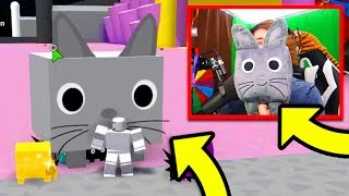 The OWNER Sent Me The *BEST* PET in Pet Simulator! (HUGE CAT Pet) | Roblox