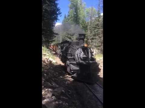 Needleton Train