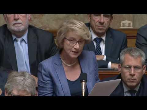 Dominique Nachury - Réforme de l'Agence Française de l'Adoption