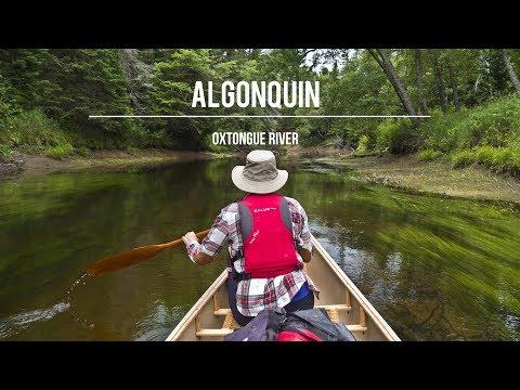 Algonquin Park: Oxtongue River Canoe Route