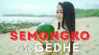 Dj Semongko Tarik Sis - Safira Inema (Official Music Video ANEKA SAFARI)