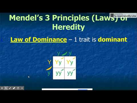 Mendel's Laws and Dihybrids