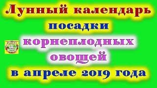 Лунный календарь посадки корнеплодных овощей в апреле 2019 года