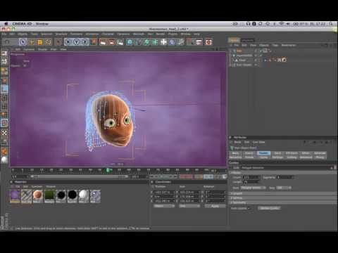 Tip47 Setting HAIR Start Position in CINEMA 4D