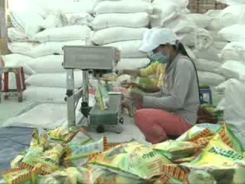 Cơ sở sản xuất bột gạo và nếp LỘC SÁNH