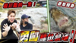 【老闆收留我#5】潛入西馬最大鱷魚園打工,親自體驗0距離餵食秀,惹怒百歲巨鱷!頻道史上最危險的一集!@Jeff Leong @Inthira 小辣椒